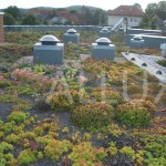 světlovody ALLUX 350 - instalace v zelené střeše